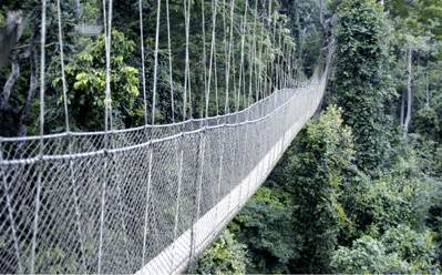 My first time on the canopy walk was very challenging and adrenaline pumped but fun although Iu0027m height-phobia. & Kakum National Park