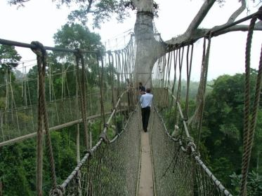 Kakum Canopy Bridge