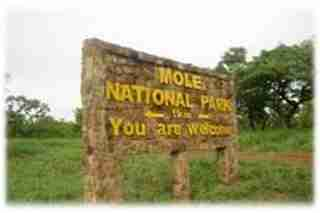 MOLE-NATIONAL-PARK