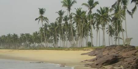 coconut beach resort hotel