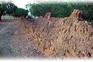 nalerigu-slave-wall